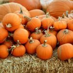 Skin Care Tricks and Treats