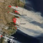 The Australian Wildfires and What You Can Do